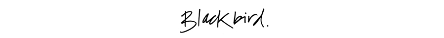 BlackbirdBLOG signature